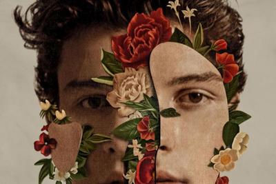 Shawn Mendes investierte viel Arbeit ins Artwork. (c) Universal Music
